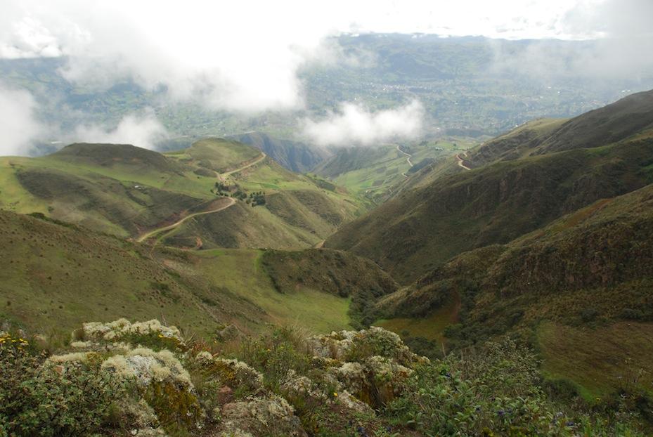 landscape w road